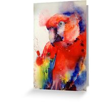 Red the Macaw, Greeting Card