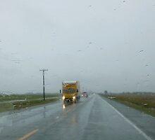 Rainy Highway by WildestArt