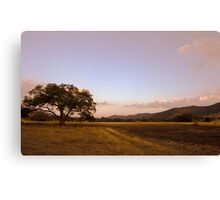 Texas Hill Country Ranch at Dawn Canvas Print