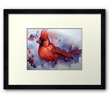 The Cardinal returns Framed Print