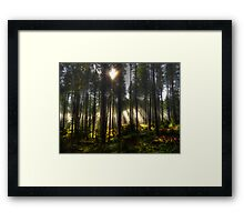 It's Where It's At Framed Print