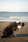 Beach Laddie by Michael Haslam