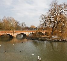 A Bridge across the River Avon in Stratford Upon Avon UK by Keith Larby