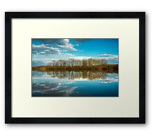 Forest and trees reflections in water nature photo Framed Print