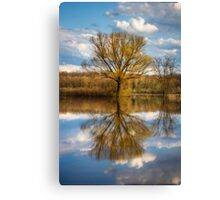 Nature photo of a tree and deep blue sky water reflection Canvas Print