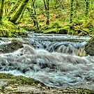 The Golitha Falls HDR by Anthony Hedger Photography