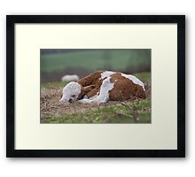 Sleeping Away.. Framed Print
