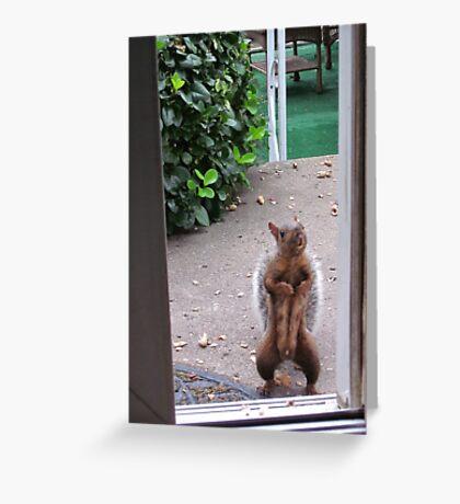 The Neighborhood Flasher Greeting Card
