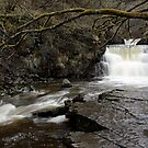 The Tees Tributary by Harry Purves