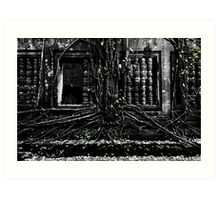 Entangled Walls, Cambodia Art Print