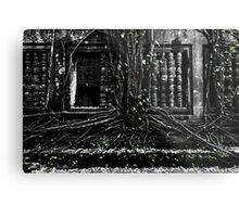 Entangled Walls, Cambodia Metal Print