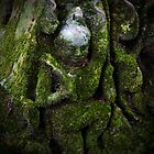 Green Man, Cambodia by Michael Treloar