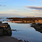 View To The Farnes. by Dave Staton