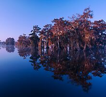 Cypress Island by Paul Wolf