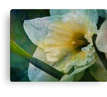 Bluesy Spring Canvas Print