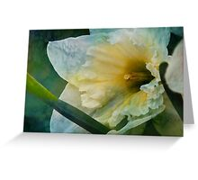 Bluesy Spring Greeting Card