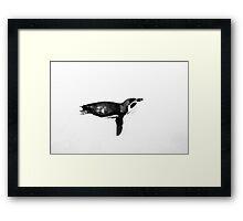 Print - Penguin Framed Print