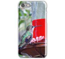 Humming Birds iPhone Case/Skin