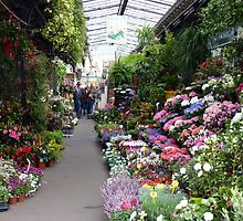 Typical Paris flower shop by bubblehex08