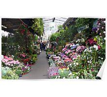 Typical Paris flower shop Poster