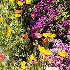 A Spring Mix by heatherfriedman