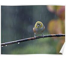 Raindrops keep falling on my head...........! Poster