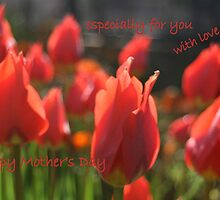 Happy Mother's Day tulips. by elphonline