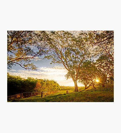 Dawsley, Adelaide Hills SA Photographic Print