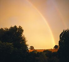 Sun shower rainbow, Hagley, Tasmania by Alister A Mackinnon