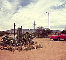 Mexican Desert Truck by jevep