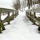 Wooden Bridge Over Creek by Mikell Herrick