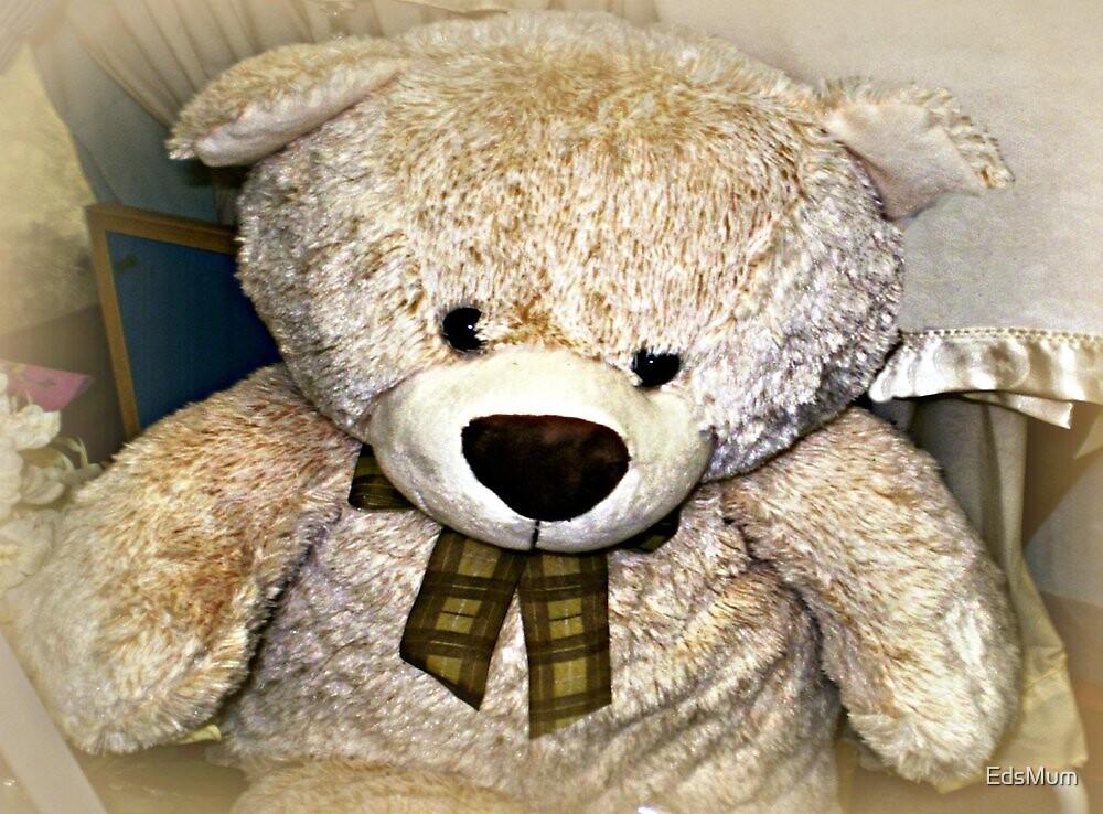 I need a cuddle - Teddy Bear by EdsMum