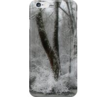 Prince of Peace iPhone Case/Skin