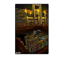 Stronghold Library Photographic Print
