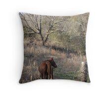 Wild Horse.... Throw Pillow