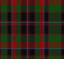 02029 Cumming Hunting Clan/Family Tartan Fabric Print Iphone Case by Detnecs2013
