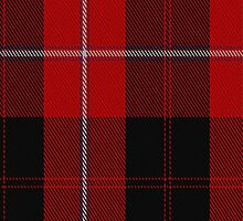 02033 Cunningham #3 Clan/Family Tartan Fabric Print Iphone Case by Detnecs2013