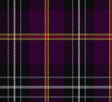 02036 Curnow of Kernow Tartan Fabric Print Iphone Case by Detnecs2013