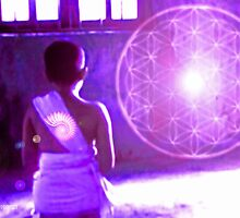 Flower of Life Meditation  by Ellen Vaman