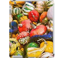 Gourds at the Farmers Market iPad Case/Skin