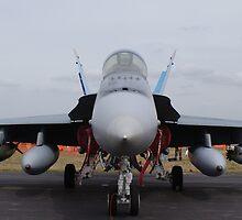 F/A 18-A Hornet - 3SQN RAAF Williamtown by Adam Burr