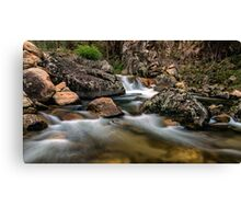 East Kiewa River Canvas Print