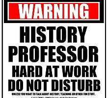 Warning History Professor Hard At Work Do Not Disturb by cmmei