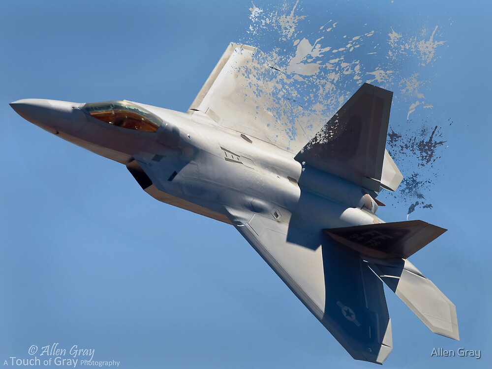 Shattered Flight by Allen Gray