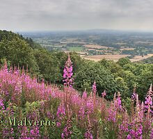 View from the Malverns by Gethin Thomas