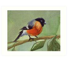 little birdie 2 Art Print