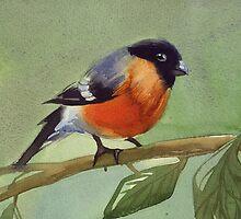 little birdie 2 by tallula