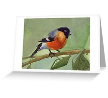 little birdie 2 Greeting Card