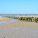 Beach in Breskens, Zeeland by 7horses