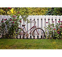 Vintage Schwinn Bike & White Picket Fence Photographic Print